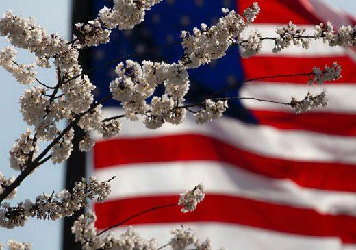 Memorial Day USA flag